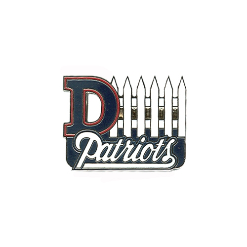 Pats D-Fence Pin