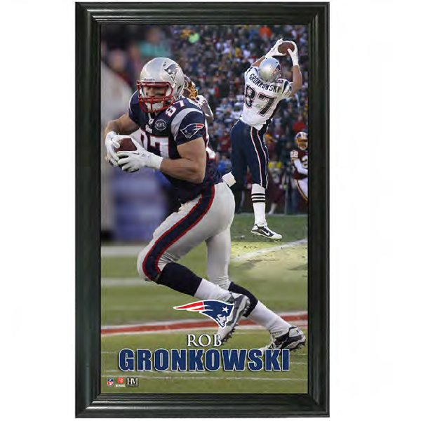 Rob Gronkowski Pano Vertical Frame