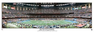 SB XXXVI  Panoramic Print