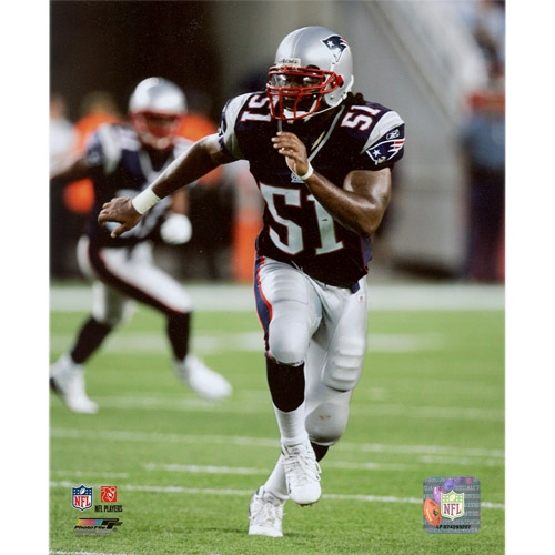 Jerod Mayo 8x10 Carded Photo