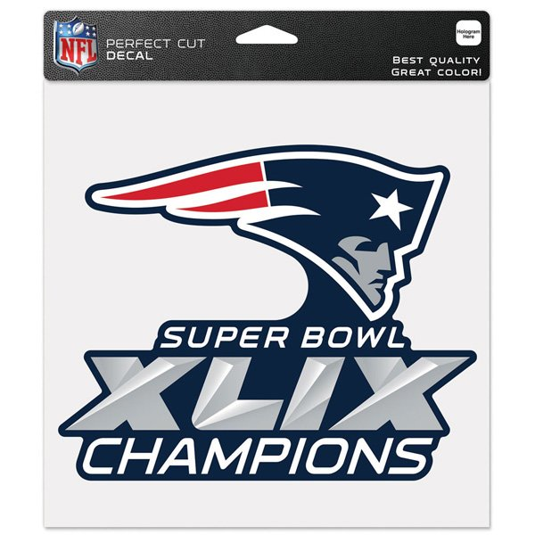 Super Bowl XLIX Champs 8x8 Decal