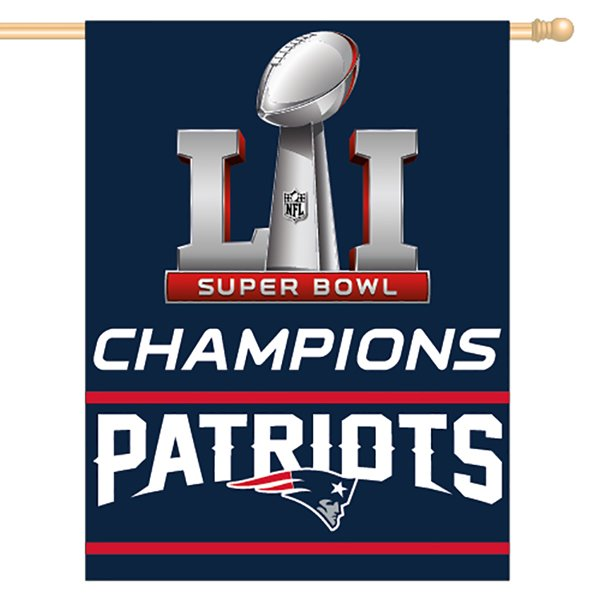 Super Bowl LI Champions Flag