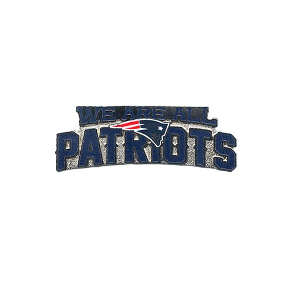 We Are All Patriots Pin
